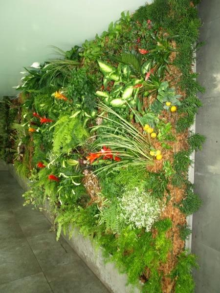 Quality garden 39 s jard n vertical o muro verde Jardines verticales baratos