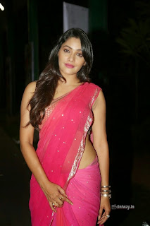 Kesha-Khambhati-Photos-at-Best-Actors-Audio-launch