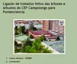 Fichas Árbores CEP Campolongo