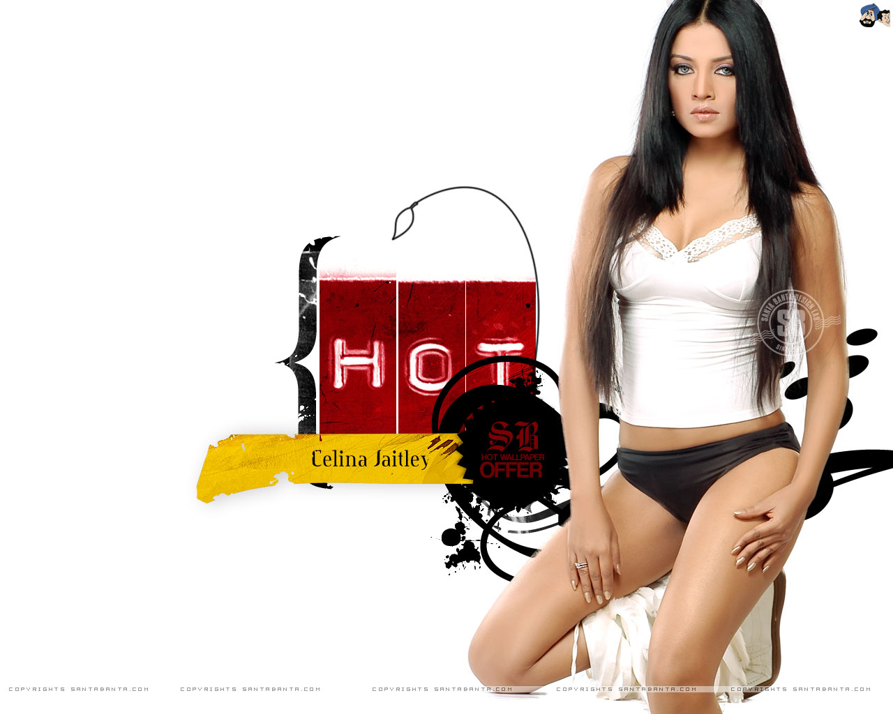 Download Mobile Bollywood Celebrity Celina Jaitley Sexy Photo Gallery ...