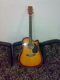 Stinger acoustic