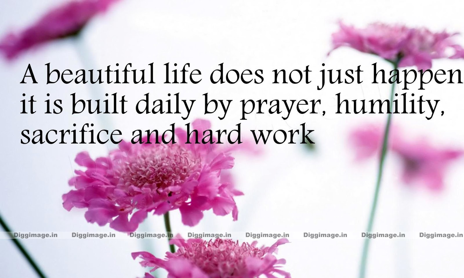 A Beautiful Life does not just happen it's built by prayer ...