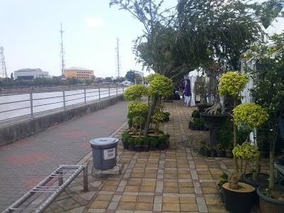 Lokasi Festival yang tertata rapi dan bersih