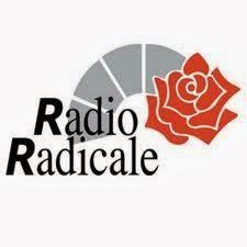 Dossier vidatox registrazione audizioni for Diretta radio radicale
