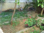 μικρος κηπος (πριν)