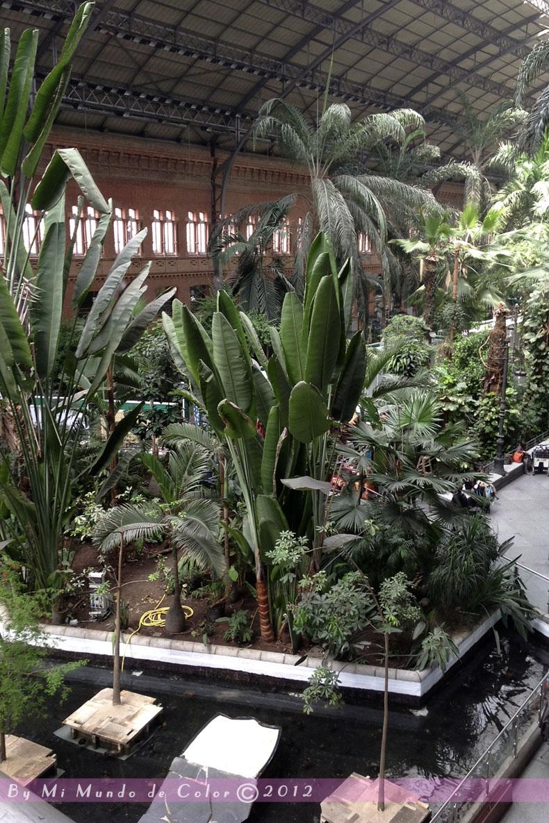 Microbolso y viaje a madrid ii mi mundo de color ya soy mam - Jardin tropical atocha ...
