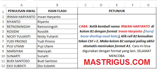 Mengubah Kapitalisasi huruf yang tepat (normal) di Microsoft Excel 2013 menggunakan isian flash
