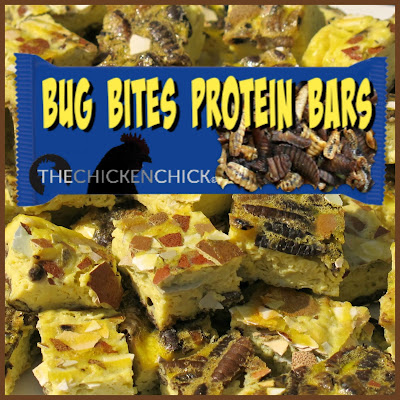 Bug Bites homemade protein bars for chickens