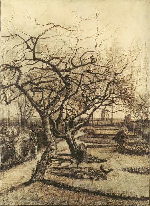 Line Drawing By Vincent Van Gogh : Maher art gallery vincent van gogh drawing