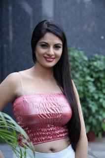 actress Jinal Pandya navel