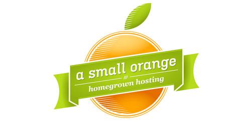 A Small Orange Hosting Review