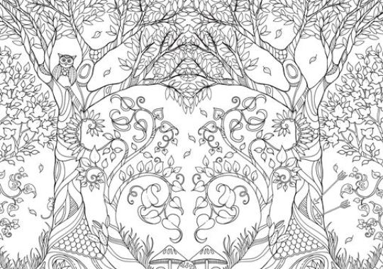 Secret Garden Coloring Book Download The Buzz Day 11 30 Challenge 2