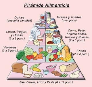 Los grupos de la comida que forma la pirámide son los cereales, la