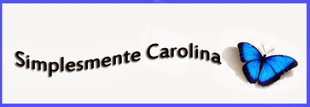 blog.simplesmentecarolina