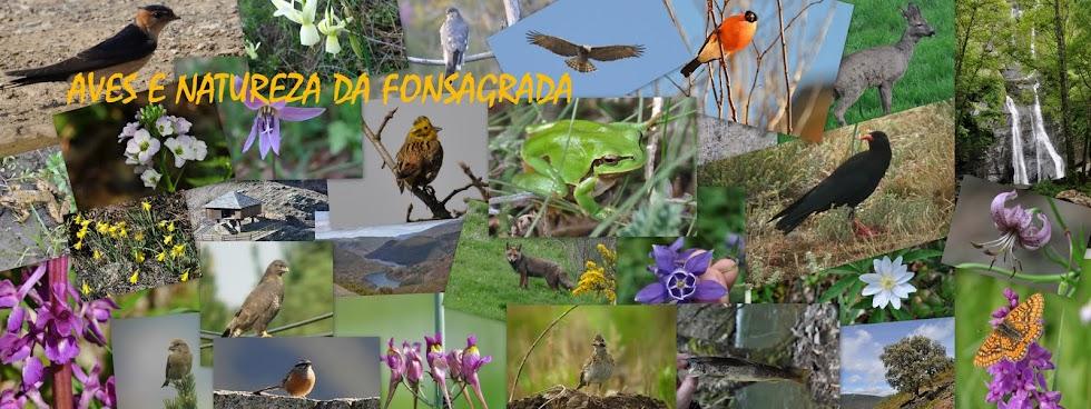 AVES E NATUREZA DA FONSAGRADA