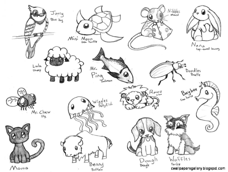 Cute animal drawings tumblr wallpapers gallery for Fun to draw cute animals