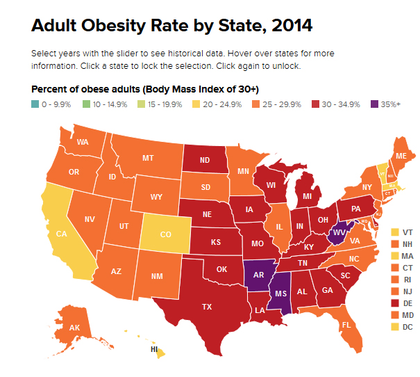 summary report on obesity Obesity is a substantial public health crisis in the united states and in the rest of the industrialized world the prevalence is increasing rapidly in numerous.