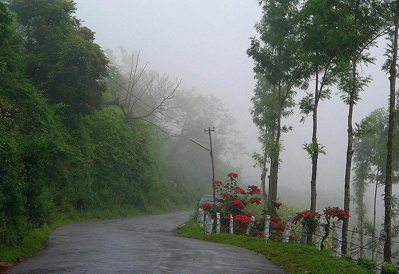 Munnar Amazing Hill Station Of Kerala India Tourism