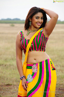 Richa Gangopadhyay after a long time in Spicy Saree and Tight Blouse Spicy Pics