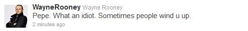 Rooney y Pepe