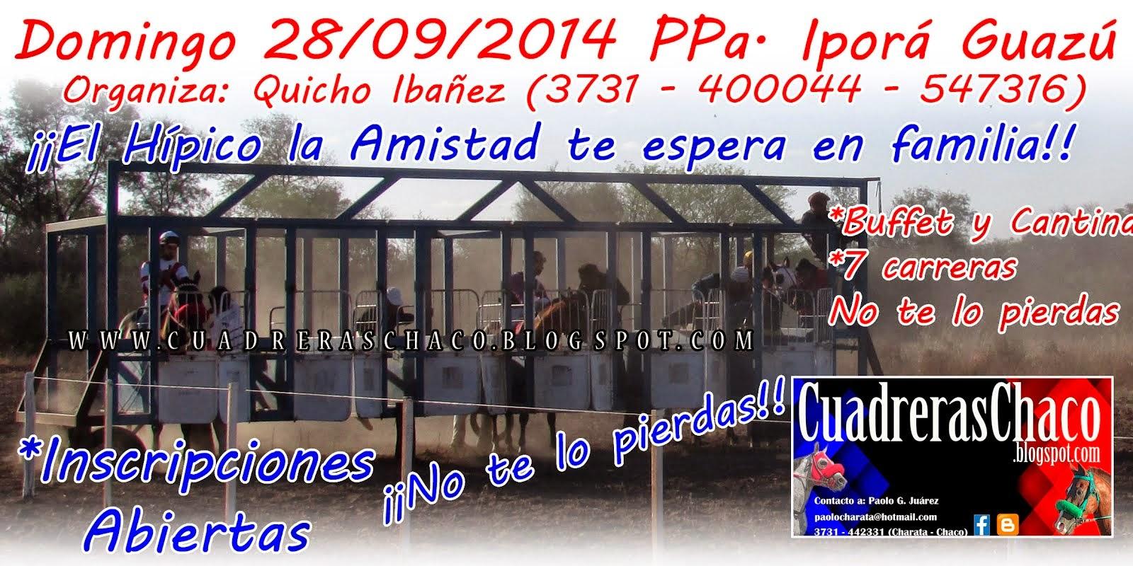 quicho 28-9