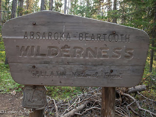 Wilderness sign, Beartooth Mountains, Montana