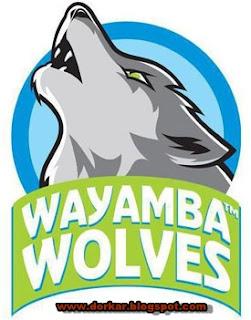 slpl team wayamba wolves logo