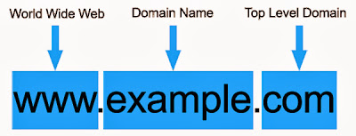 TLD Domain Name