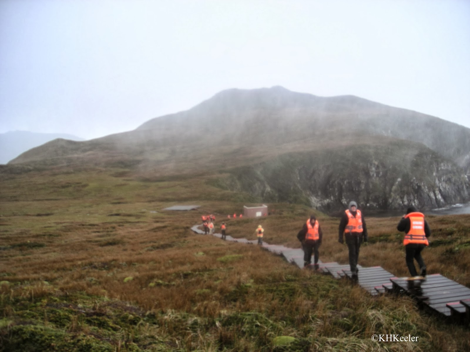 Cape Horn - a wet slippery boardwalk