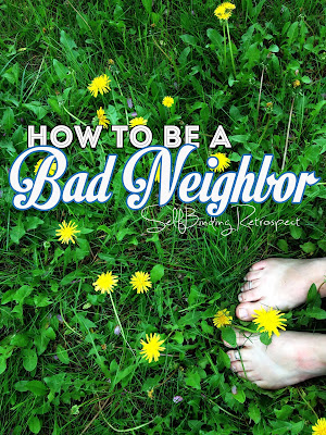 How To Be a Bad Neighbor - SelfBinding Retrospect by Alanna Rusnak