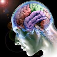A psicoterapia promove mudanças cerebrais