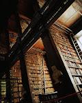 Library/Biblioteca
