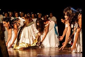 ����La Danza que acompaña y transforma todos los momentos de la vida...veni a bailar cada latido