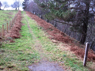 The path follows the Dee on the south side of Deeside