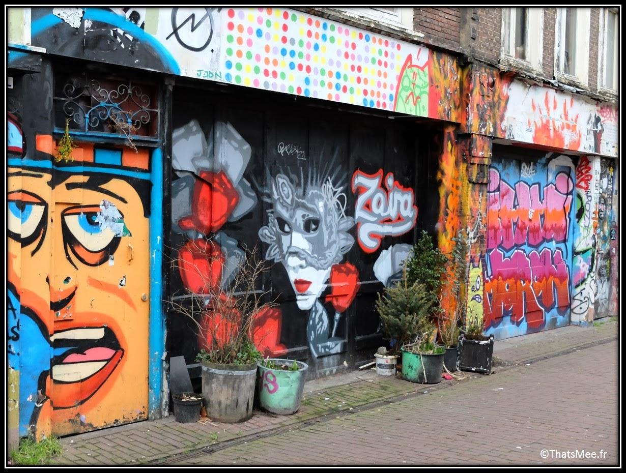 Street Art Wijdesteeg Parking spuistraat Amsterdam faces visages bal masqué eyes wide shut Zaira