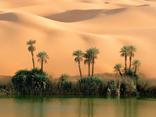 Fabulous Oasis in The Libyan Sahara