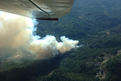 Cleveland Ridge Fire