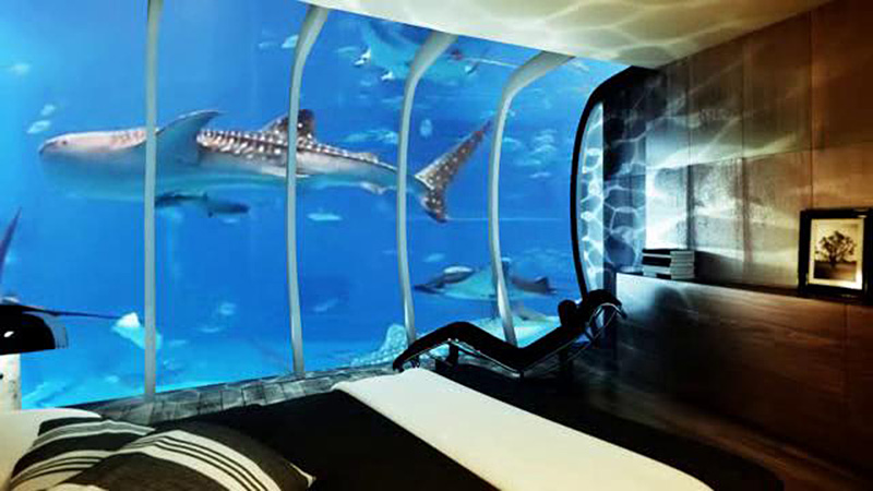 The water discus hotel submerged accomodations for Hip hotel dubai