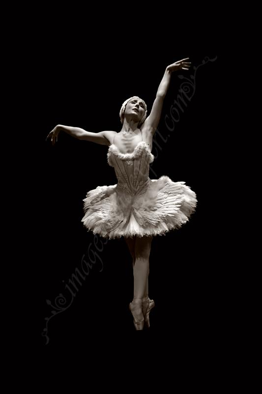 Artistic ballet photos 7