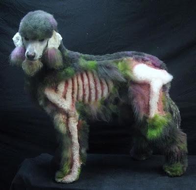 Poodle Zumbi