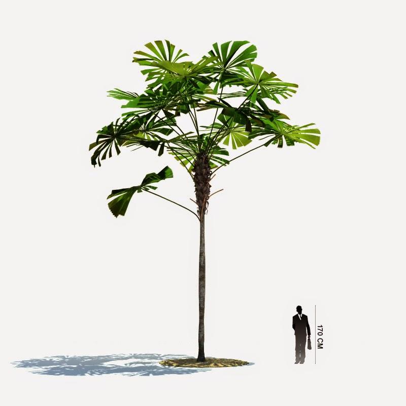 موديلات وتصاميم أشجار صالحة لبرنامج