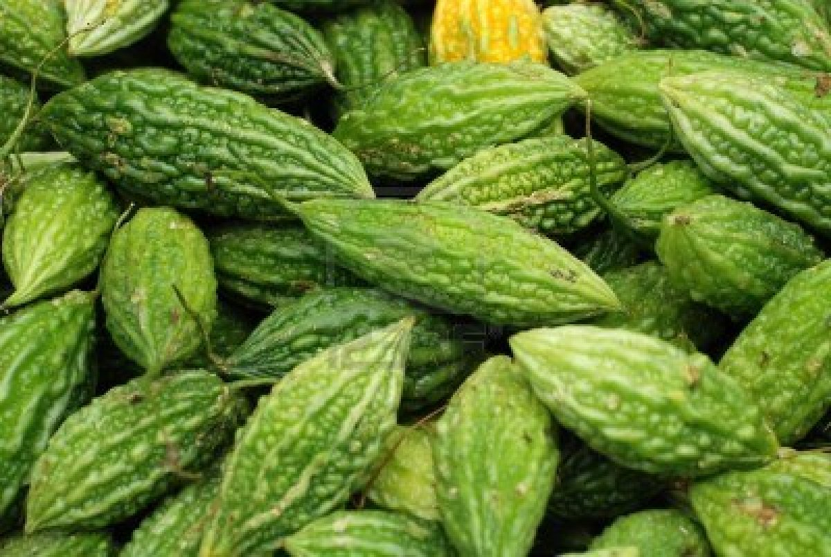 karela study Bitter melon or bitter gourd, tastes extremely bitter and little bit pungent its fundamental benefits - slow down aging, help with weight loss and diabetes.