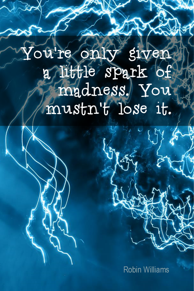 visual quote - image quotation for INDIVIDUALITY - You're only given a little spark of madness. You mustn't lose it. - Robin Williams