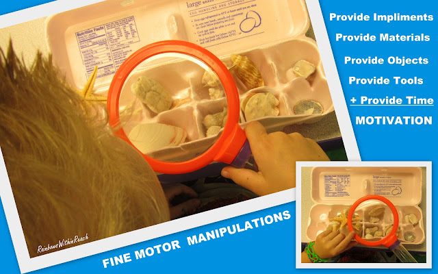photo of: Science Exploration in Preschool with Magnifying Glass and Shell Collection