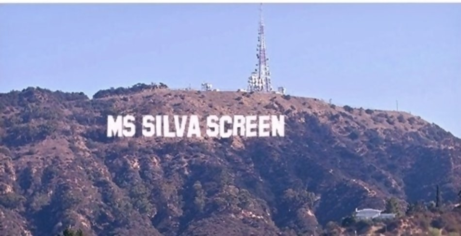 Ms Silva Screen