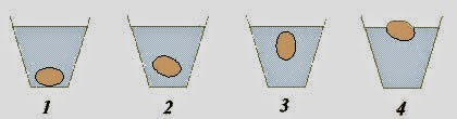υπάρχει μία παλιά, καλή μέθοδος για να διαπιστώσουμε εάν είναι φρέσκα τα αυγά  ή όχι.,