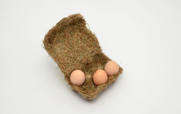 sustainable egg cartons