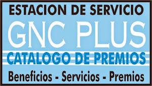Estacion de Servicio GNC
