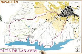 Plano embalse de Navalcan, Ruta ornitológica