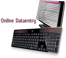Outsource Online Data Entry Services